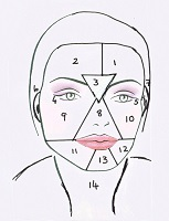 Face Mapping Guide