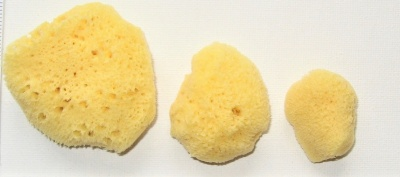 Natural Sea Sponges Fine Silk Facial pack - 1pck